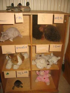 dierenhokken Nutsschool Maastricht