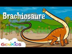 ▶ Le Brachiosaure - Le Dictionnaire sur les dinosaures - Dessin animé éducatif Genikids - YouTube