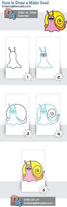 How to Draw a Water Snail for children  http://drawingmanuals.com/manual/how-to-draw-a-water-snail/