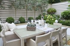 Olive trees and boxwood balls....Full details on Modern Country Style blog: Leopoldina Haynes' Small Garden