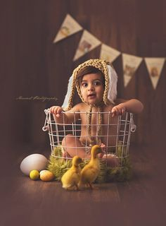 Studio mini photo session for Easter in studio; ducklings, eggs, bunny ears, basket   Photo by Massart Photography of Warwick, RI www.massartphotography.com; info@massartphotography.com