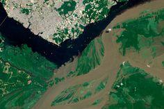 Sur cette photo, les eaux boueuses de l'Amazone rencontrent celles du Rio Negro. Sur près de 80 kilomètres, elles se côtoient sans se mêler. © NASA