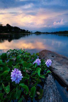Zambezi river, Zimbabwe BelAfrique - Your Personal Travel Planner www.belafrique.co.za