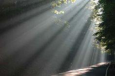 Meditationstechniken - Bilderreisen » Wahre Meditation