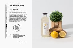 FICO Ginger Craft Ale on Behance