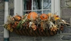 Window with pumpkins