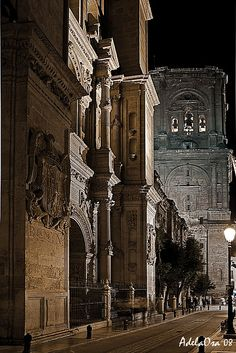 The Tower of the Cathedral and the Gate of Forgiveness in Granada, Spain