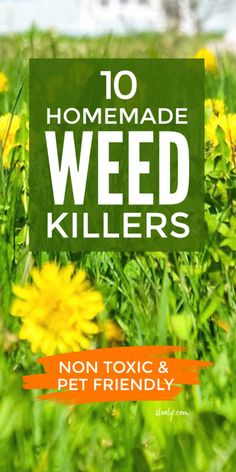 Non toxic DIY homemade weed killers that use natural, organic, pet friendly techniques to control weeds. These are the best ways to kill weeds that are soil, wildlife and pet safe. Growing Herbs, Growing Vegetables, Gardening For Beginners, Gardening Tips, How To Kill Grass, Weed Killer Homemade, Organic Weed Control, Weed Killers, Weed Seeds
