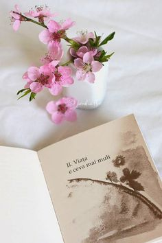Friday Flowers Hristos a inviat! Flower Qoutes, My Notebook, Better Life, Peace And Love, Cool Words, Bridal Shower, Encouragement, Place Card Holders, Positivity