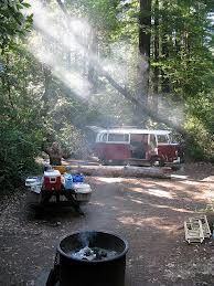 Setting up camp and natural light streaming through the trees