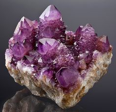 Fine specimen of Cactus Amethyst crystals on matrix!  In excellent condition with superb glassy surfaces and a purple color that is sure to impress!  The terminations are complete and undamaged with only the tiniest of bumps on a couple points.  The smaller crystal faces climbing the larger crystals add an incredible amount of flash!  From the Magaliesburg Mts., Pretoria, Gauteng Province, South Africa.