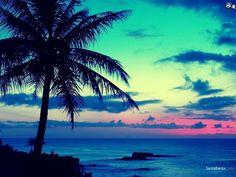 ... Beaches 1024x768 Wallpaper ...