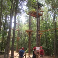 Ropes course with Impact training.  11 years ago.....still use the personal tools....changed my life!