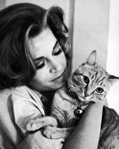 Jane Fonda with tabby cat