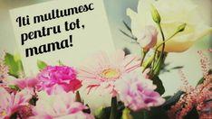 Felicitări De 8 Martie. Cele Mai Frumoase Mesaje şi Urări De 8 Martie | Libertatea 8 Martie, Floral Arrangements, Birthday, Mai, Plants, Beautiful, Quotes, Quotations, Birthdays