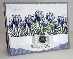 beautiful blooms in purple