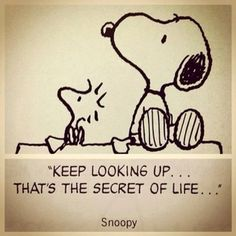 'Keep Looking Up, That's the Secret of Life', Sound Advice from Snoopy and Woodstock.