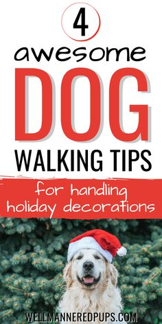 Dog walking tips for handling holiday decorations - 4 awesome tips you need to know!