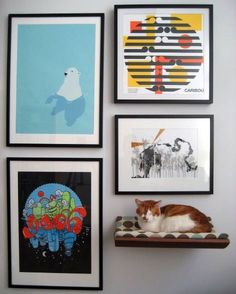 Space Saving for Pet Owners: Curve Wall-Mounted Pet Bed