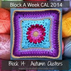 Autumn Clusters Crochet Square Aurora Suominen 300x300 Block a Week CAL 2014