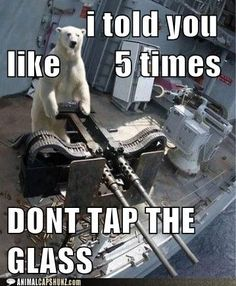 Don't tap on the glass.