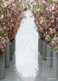 Transport guests to a magical place: your wedding! Simply line the entryway to the ceremony with vessels brimming with flowering branches. These tall glass cylinders, which we painted gray, can hold cherry, birch, or any seasonal flowering opt Wedding Wishes, Wedding Bells, Wedding Events, Wedding Ceremony, Wedding Flowers, Aisle Flowers, Wedding Dinner, Wedding Receptions, Garden Wedding
