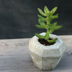 DIY geometric concrete succulent planter with free template download.