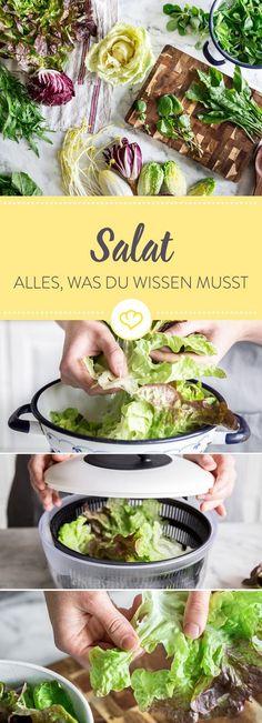 Du bist Fan von knackigen Salaten? Dann findest du hier alles Wissenswerte und viele Zubereitungstipps rund um das grüne Blattgemüse.