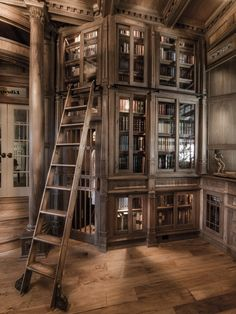 Home Library ~ Oh, my sweet Lord. There are no words for this... check out the skeleton!