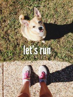 Vegan marathon training: 10 Must-Read tips on Running with Your Dog
