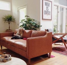 X Brown Leather Sofa. (Smaller Sofa To Fit The Space) Leather U003d Allergy  Free! And Cat Scratch Proof!
