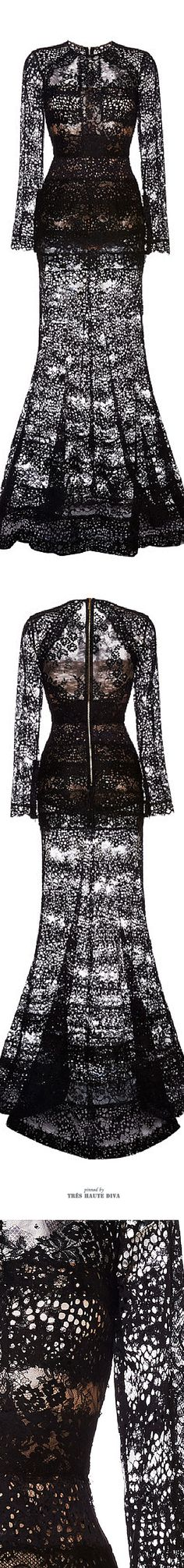 Ellie Saab Black Lace Column Gown ♔ SS 2015