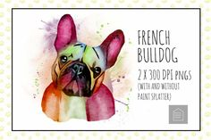 Paint Splatter, Design Bundles, French Bulldog, I Shop, Give It To Me, House Design, Illustrations, Dogs, Painting