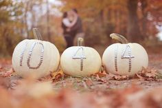 Fall, engagement, plus sized, save the date, beautiful photos!