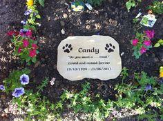 Pet memorial engraved sandstone, text painted black