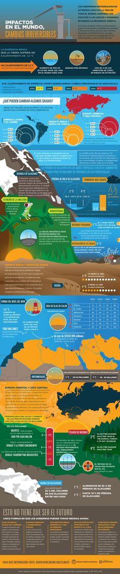 ¿Qué pueden cambiar algunos grados? #infografía