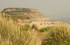 Hengistbury Head in Bournemouth, Dorset. I have so many happy memories of this place running around with my lovely little family finding secret beaches and shells.