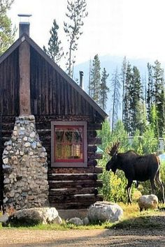 For the love of rustic cabins in the woods! Love the moose!