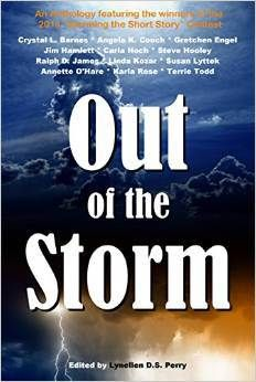 """My Website with all the latest info on """"Fire in a Storm""""!"""