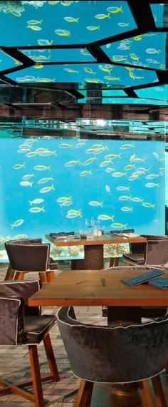 Have some extra guests at dinner while in the #Maldives.