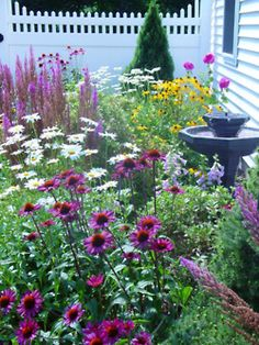 coneflowers, Shasta daisies, black eyed Susans, blazing stars= beautiful
