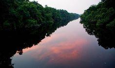 Novo Airão - AM: cheia do rio até a copa das árvores e reflexo das várias cores do céu.