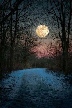 Beautiful!! #snowscenes