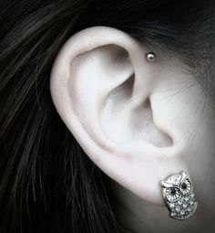 forward helix piercing, kinda like that. and those owl earrings are cute!
