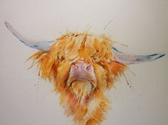ARTFINDER: Hairy Highland! by Sue Green - A loosely painted, colourful watercolour of a hairy highland cow