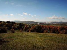 Indian Summer is here!  #indiansummer #autumncolours #fallcolors #brno #czech #morava #viewfromthetop #naturewalk #czechrepublic #czechphotography #czech_world #igerscz #hikingadventures #hikingtrails #citywalk #hikingculture #hikinglife #naturelovers #naturepics #natureview #outdoors #outdoorlife #outdoorslife #greatview #scenery #sceneryshots #autumnday #landscapeporn #landscapephoto #photooftheday