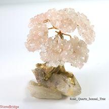 Bonsai Tree Small
