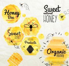 6 watercolor honey label vector diagrams