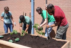 Celebrity landscaper helps build an educational garden at Glassboro elementary school, May 2015 May 3, Strawberry Plants, Natural World, Elementary Schools, Sustainability, Photo Galleries, Celebrity, Education, Landscape