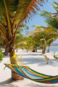 Ambergris Caye, Belize - Explore the World with Travel Nerd Nici, one Country at a Time. http://TravelNerdNici.com